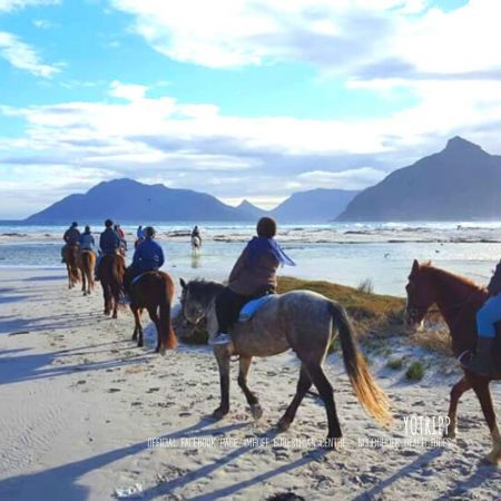 Imhoff Equesterian Centre: Horseriding on the Beach Hoseback Tours: Cape Town Tours