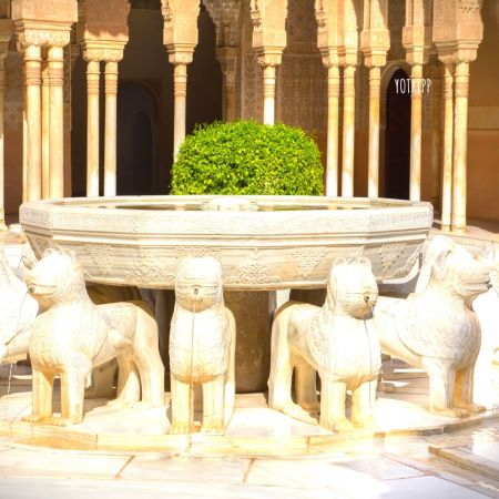 Alhambra Palace Tour: Court Of The Lions