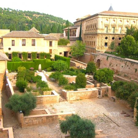 Alhambra Daytime Tours - Alhambra Guided Tours